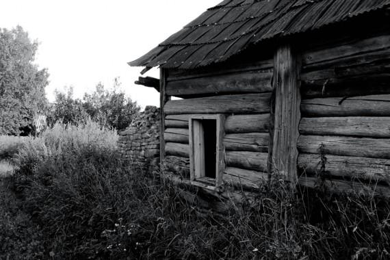 Мертвая Псковщина (30)