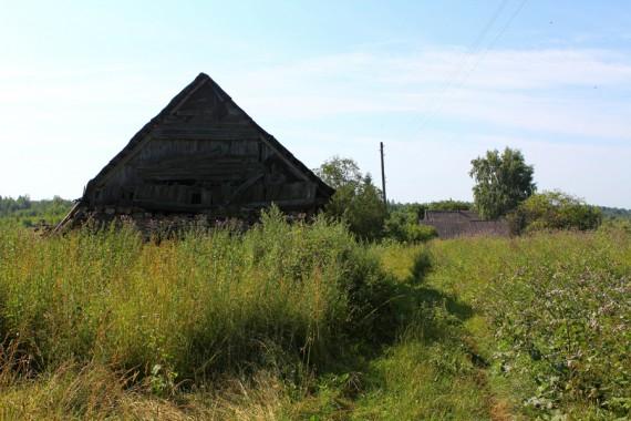 Мертвая Псковщина (14)